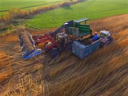 CBD hemp harvesting system K-15, Laumetris